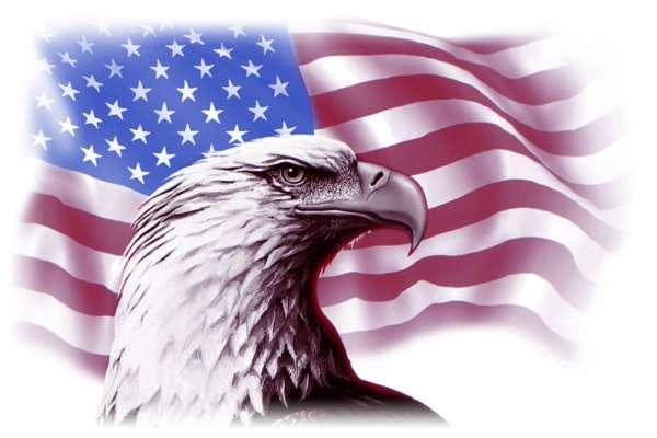 American Blend Liquid